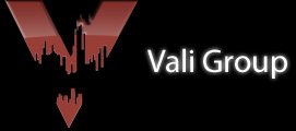 Vali Group Logo